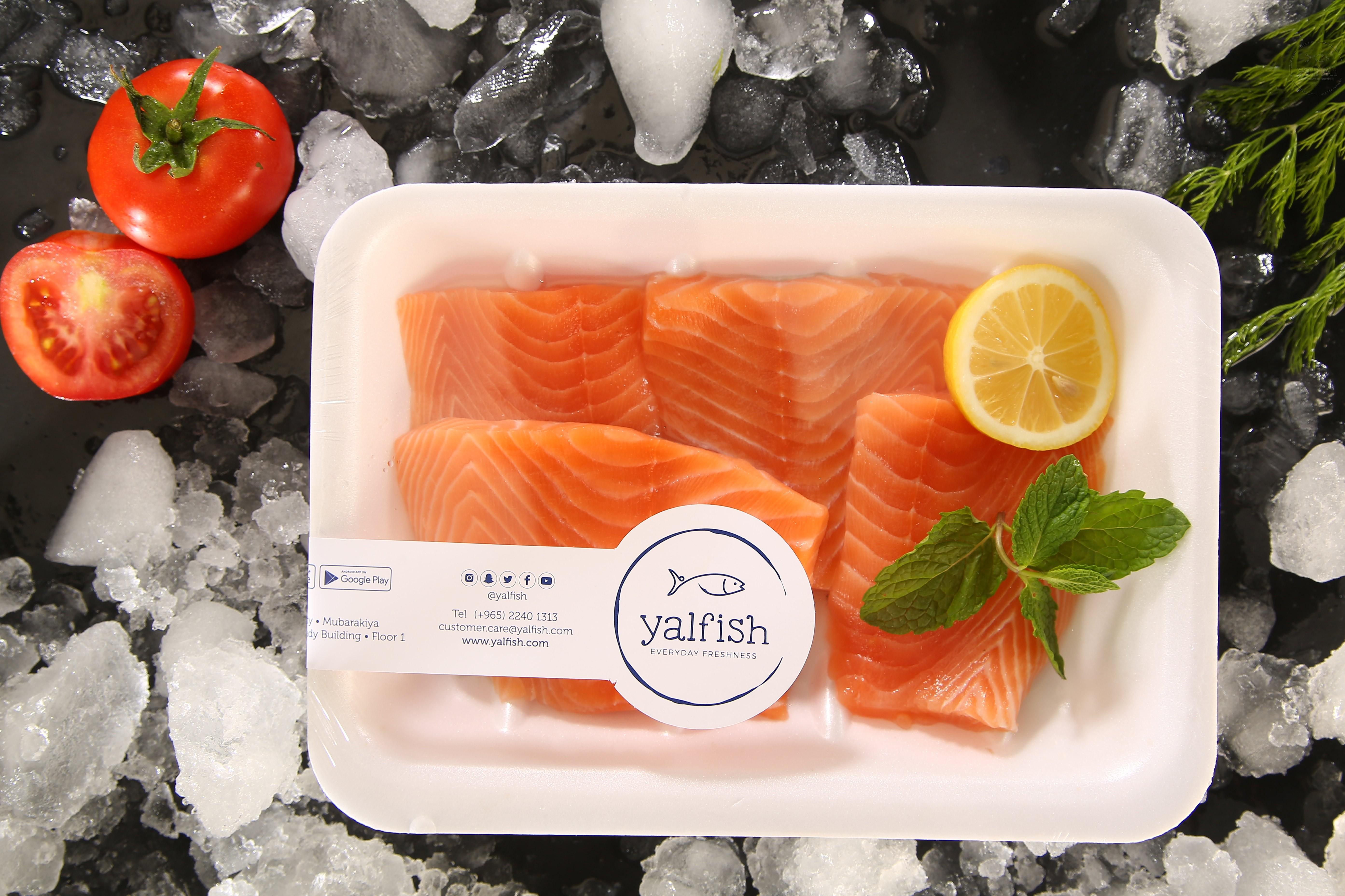 Salmon Fillet - Fish - Sea Food